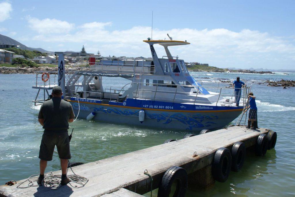 Dyer Island Cruises ist einer von vielen Whale Watching Veranstaltern in Gansbaai.